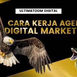 Perusahaan Digital Marketing - Jasa Digital Marketing Terbaik di Indonesia | Ultimatoom